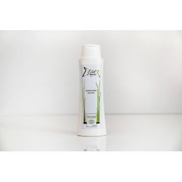Shampooing douche au lait d'ânesse 250ml